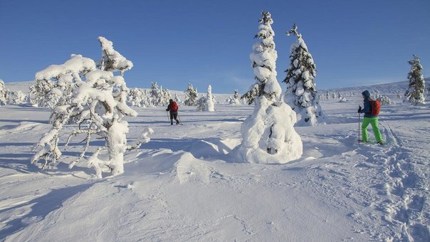 Brexit and Thomas Cook took their toll on Lapland's Christmas tourism business