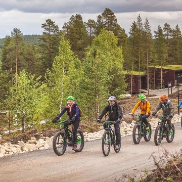 bike-fat-bikes-cycling-forest-Lapland-by-Visit-Rovaniemi