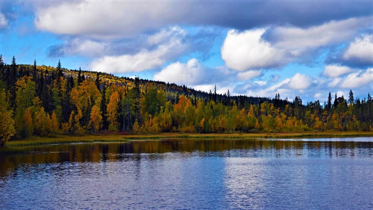 Ruska-forest-lake-lapland-by-Pablo-Morilla
